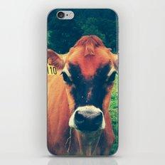 Cow 110 iPhone & iPod Skin