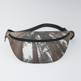 Sky Climbers - Sequoia Fanny Pack