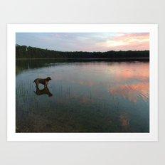 silver lake reflection Art Print