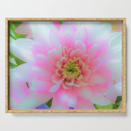Bouquet in Blue and Pink 1 - enhanced Chrysanthemum Serving Tray