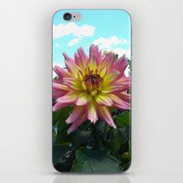 Pink Dahlia iPhone Skin