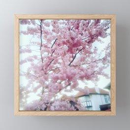 Spring on. Framed Mini Art Print