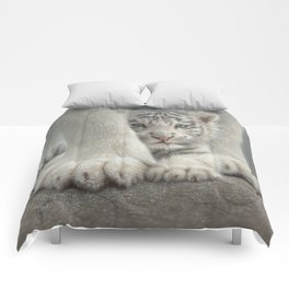 White Tiger Cub - Sheltered Comforters