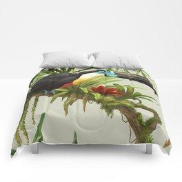 Channel- billed toucan vintage illustration. Comforters