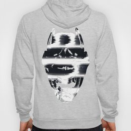 Hidden in the Madness Hoody