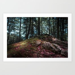 Entwined in Stone Art Print