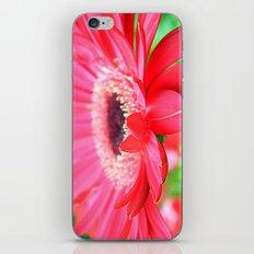Full Bloom iPhone & iPod Skin