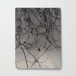 Winter Leaves (2018), from Roberta Winters Photography Metal Print