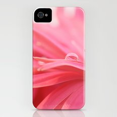 Pink Daisy iPhone (4, 4s) Slim Case