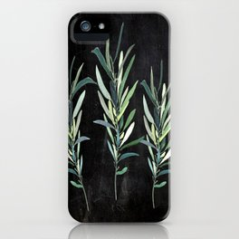 Eucalyptus Branches On Chalkboard iPhone Case