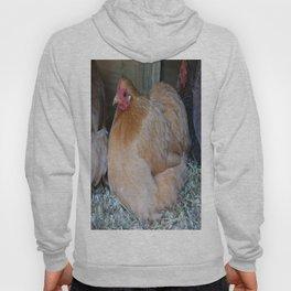 Golden chicken Hoody