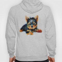 Yorki Pup Hoody