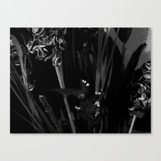 Lost in the Dark Canvas Print