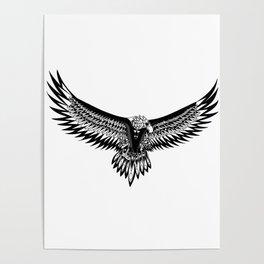 Wild eagle ecopop Poster