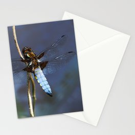 Broad-bodied Chaser Dragonfly Stationery Cards