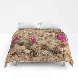 Desert Cacti in Bloom - 2 Comforters