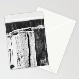 Pile heads at the beach of Zeeland, The Netherlands | Black and White Fine Art Photo Stationery Cards