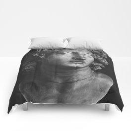 Alexander The Great II Comforters