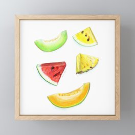 Summer Fruits Framed Mini Art Print