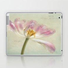 Tulipa polychroma Laptop & iPad Skin
