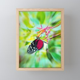 Butterfly in summer Framed Mini Art Print