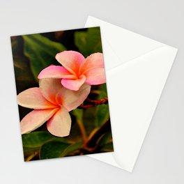 Hawaiian Orange Sherbet Plumeria Stationery Cards
