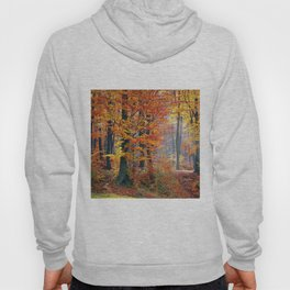 Colorful Autumn Fall Forest Hoody