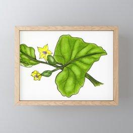 Cucumber Blooms Framed Mini Art Print