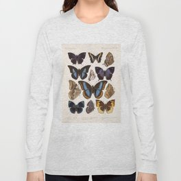 Vintage Scientific Insect Butterfly Moth Biological Hand Drawn Species Art Illustration Long Sleeve T-shirt