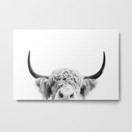 Peeking Cow BW Metal Print