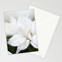 Snow White Flowers on a Dark Background #decor #society6 #buyart Stationery Cards