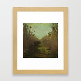 The path into the unknown Framed Art Print