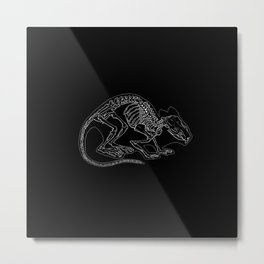 Anatomical Rat Skeleton Metal Print