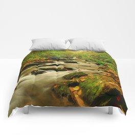 Fall Along Rock Castle Comforters