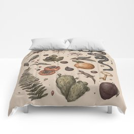 Florida Nature Walks Comforters