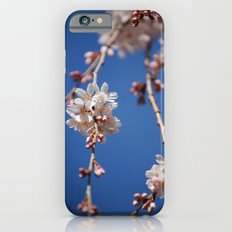Cherry blossoms Slim Case iPhone 6s