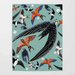 Swallows Martins and Swift pattern Turquoise Poster
