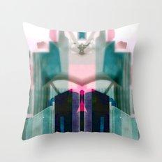 2012-13-95 63_72_92 Throw Pillow