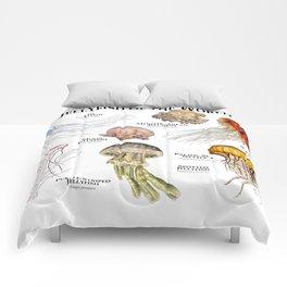 Jellyfish of the World Comforters