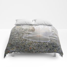 Frosted Nudibranch... Comforters