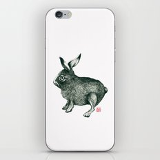 Cold Rabbit iPhone & iPod Skin