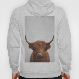 Highland Cow - Colorful Hoody