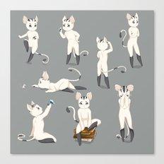 Thorodrin cat Canvas Print