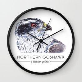 Northern Goshawk Wall Clock