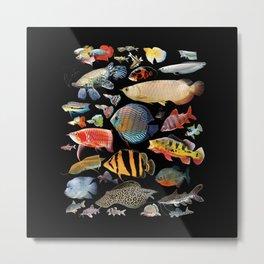Freshwater tropical fish Metal Print