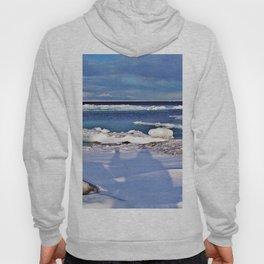 Frozen Selfie by the Sea Hoody