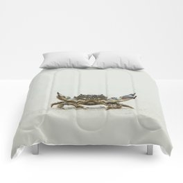 Open arms crab Comforters