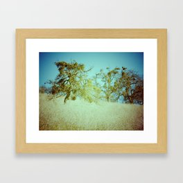 False Spring Framed Art Print