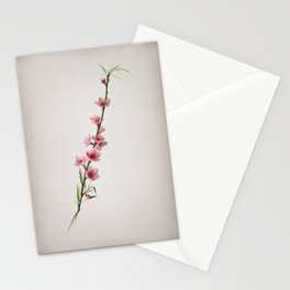 Vintage Peach Blossoms Botanical on Parchment Stationery Cards
