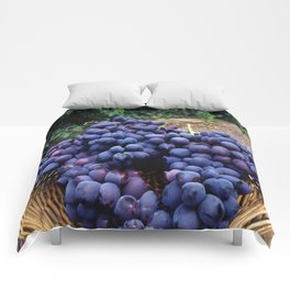 Grape Vineyard Comforters
